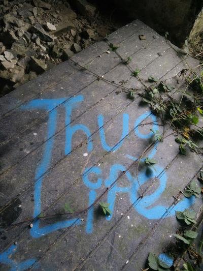 Thug Life Blue