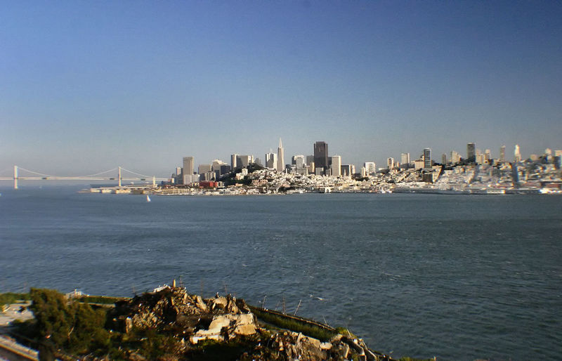 The skyline of San Francisco seen from Alcatraz Island Alcatraz Island Al Capone  Architecture Building Exterior Built Structure City Cityscape Clear Sky Day Downtown District Modern Nature No People Outdoors San Francisco Skyline Sea Sky Skyscraper Suspension Bridge Travel Destinations Urban Skyline Water Golden Gate Bridge Shark Infested ? Premium Collection