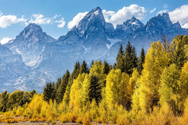 View of the grand teton mountains from schwabacher landing on the snake river. grand teton