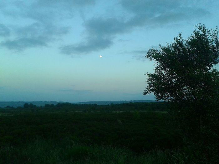 Eyeemphotography Phonephotography Eyeemphotography Nor Land Moor  EyeEm Gallery Valley Hauntingly Beautiful Moonlight Photography Calderdale Fieldscape Haunted Moonlightscape Lunar