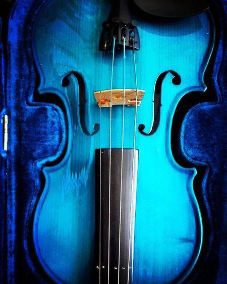 Blue 9vaga_colorblue9 Violin Blueviolin Classicalmusic Music Instrument Musicalinstrument Stringinstrument Aston Bluevelvet