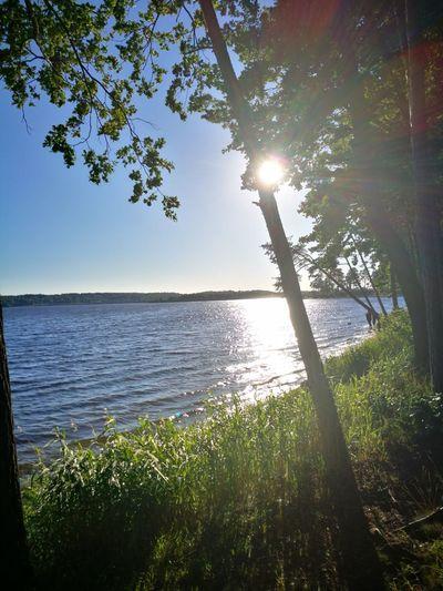 Kauno marios lithuania Water Tree Nature Horizon Over Water Beauty In Nature Summer Travel Destinations Sunset