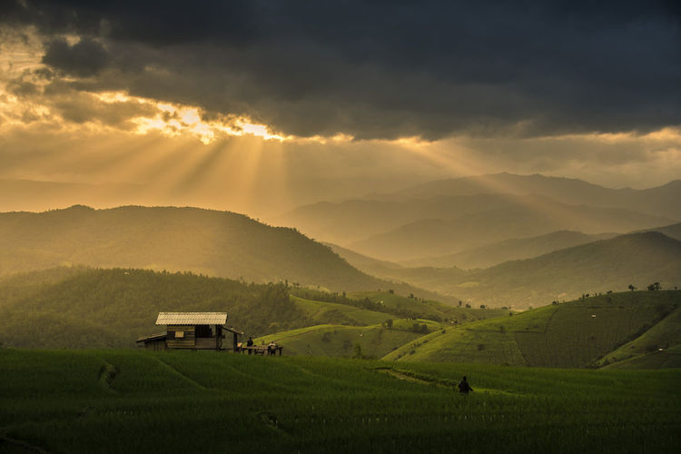 Papongpieng Chiangmai Thailand Agriculture Beauty In Nature Cloud - Sky Environment Farm Field Green Color Growth Land Landscape Mountain Mountain Range Nature No People Outdoors Plant Rural Scene Scenics - Nature Sky Tranquil Scene Tranquility