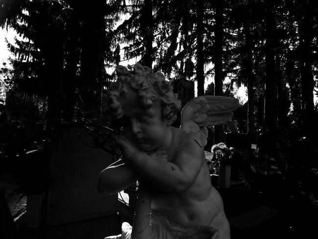 Angel Blackandwhite Blackandwhite Photography Eternaldream Focus On Foreground Funeral Putto Sunset