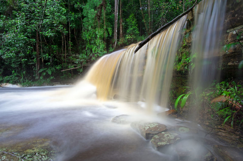 Giluk waterfall in Maliau Basin Conservation Park Sabah Borne Waterfall Sabah Borneo Malaysia Maliau Basin Conservation Area Nature Giluk Tree Water Waterfall Forest Motion Long Exposure Rapid Flowing Water Rainforest Tropical Rainforest Lush Foliage Greenery Stream - Flowing Water