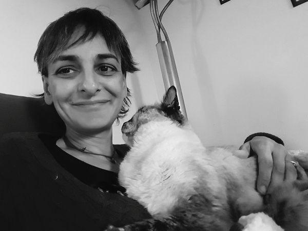 Zelenezen Siamese Cat Selfie ;)