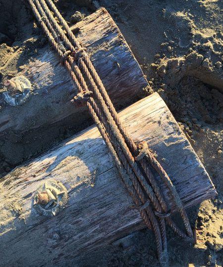 Muirbeach Muir Beach Beachphotography Showcase: November Log Rope Sand