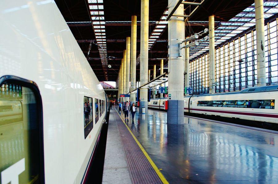 Train Train Station Madrid SPAIN Atocha Estacion De Atocha Travel Photography Reflected Glory