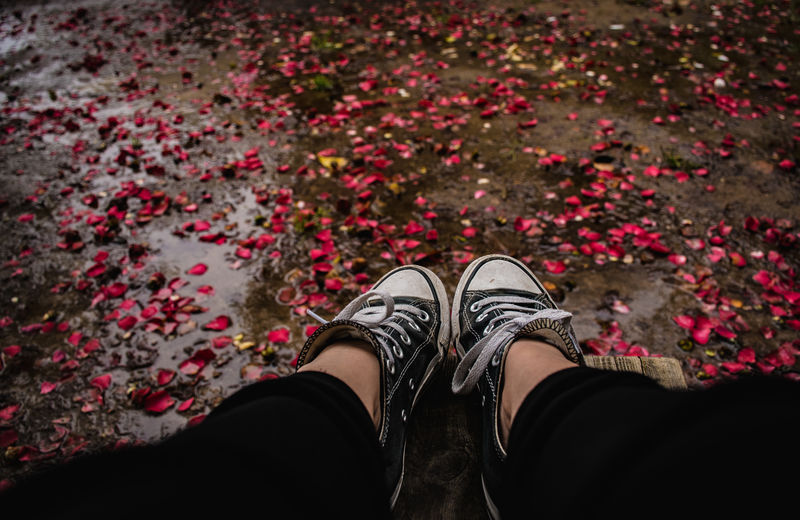 Low section of woman against flower petals on footpath