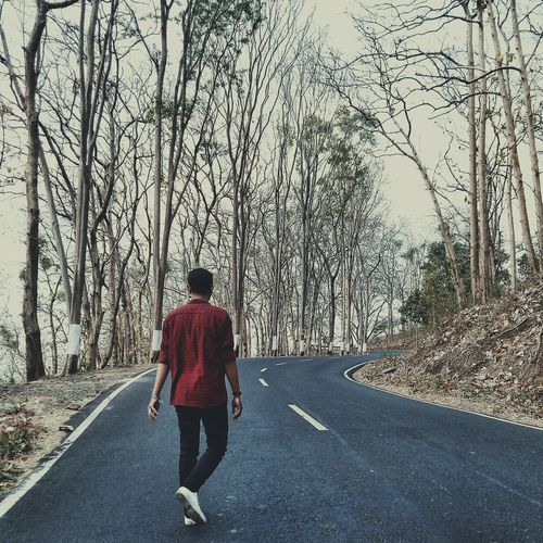 Walking alone in the middle of forest INDONESIA EyeEmNewHere EyeEm Nature Lover Autumn Leaves Autumn Forest Autumn Ssummer EyeEm Best Shots EyeEm Selects Fall Full Length Road Men Walking Rear View Street Road Marking Empty Road Bicycle Lane Dividing Line Yellow Line vanishing point Roadways Double Yellow Line Mountain Road The Way Forward Two Lane Highway Asphalt Crash Barrier Car Point Of View Treelined White Line Zebra Crossing Diminishing Perspective Country Road Moving Highway