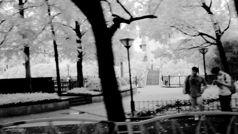IR Looking Outside The Window Road Shanghai, China Art B&w Photography Bus Hongqiao Train Station Infrared Photo Infrared Photography Outside The Window. People Photography Phone Photography PhonePhotography Rain Window Steel 随机