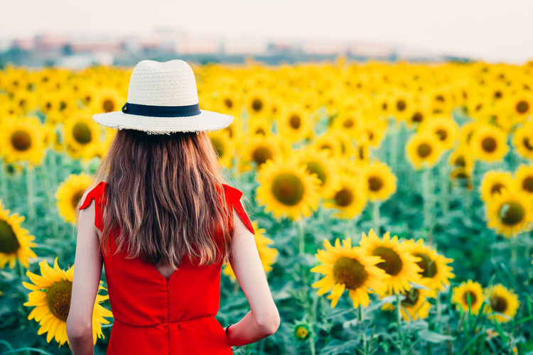 Rear view of woman standing on sunflower