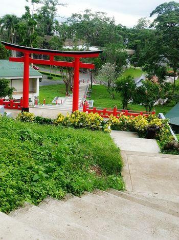 Japanese garden at UPLB Scenery Garden Red Nature UPLB