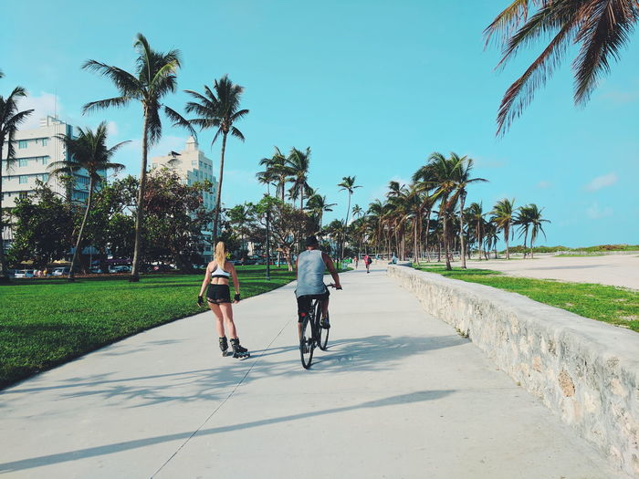 southbeach Summer Miami Florida Active Lifestyle  Activity Day Sunny Outdoors Fair Weather Warm Weather Vacation Travel Travel Destinations Tree Full Length Bicycle Girls Riding Cycling Shadow Road Boys Bicycle Lane Palm Frond Palm Tree Palm Leaf Tropical Tree Mountain Bike Friend Shore The Street Photographer - 2018 EyeEm Awards