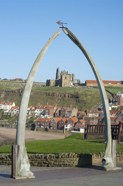 Whalebone arch in Whitby, North Yorkshire, constructed from two jaw bones to commemorate whaling in the region framing the ruins of Whitby Abbey on Tate Hill Archbones Architecture Built Structure Clear Sky Coastal Framing Historical Jaw Jawbone Jawlandmark Monument North Yorkshire Portrait Ruin Tate Hill Tourism Whale Whaling City Meetup Whitby Whitby Abbey