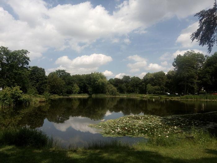 Pond Teich Stadt Sommer Summer Park Leipzig Deutschland Germany Arthur-Bretschneider-Park Eutritzsch