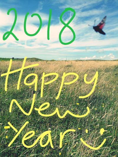 Happy New Year everyone :) Happynewyear2018 Pembrokeshire Coast Countryside Green Butterfly - Insect Text No People Day Close-up Sky