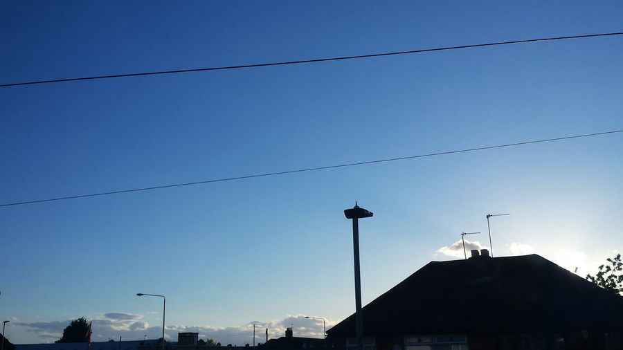 Low angle view of birds perching on power line against blue sky