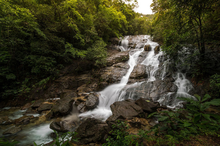 Tree Water Waterfall Motion Long Exposure Forest Sky Flowing Water Power In Nature Lightning