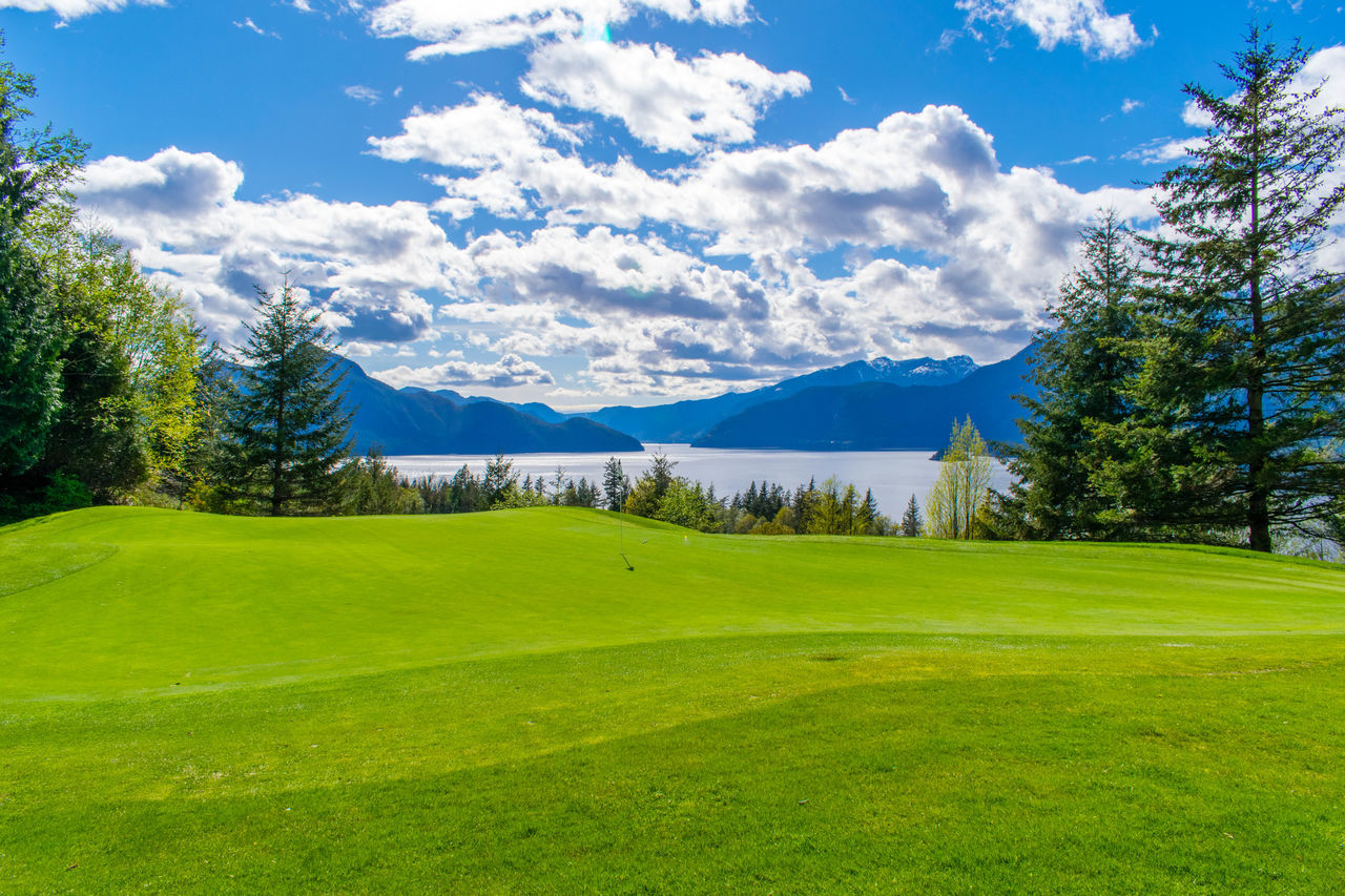 plant, scenics - nature, tree, green color, beauty in nature, grass, tranquility, sky, tranquil scene, cloud - sky, mountain, no people, environment, landscape, nature, day, idyllic, golf, land, non-urban scene, rolling landscape