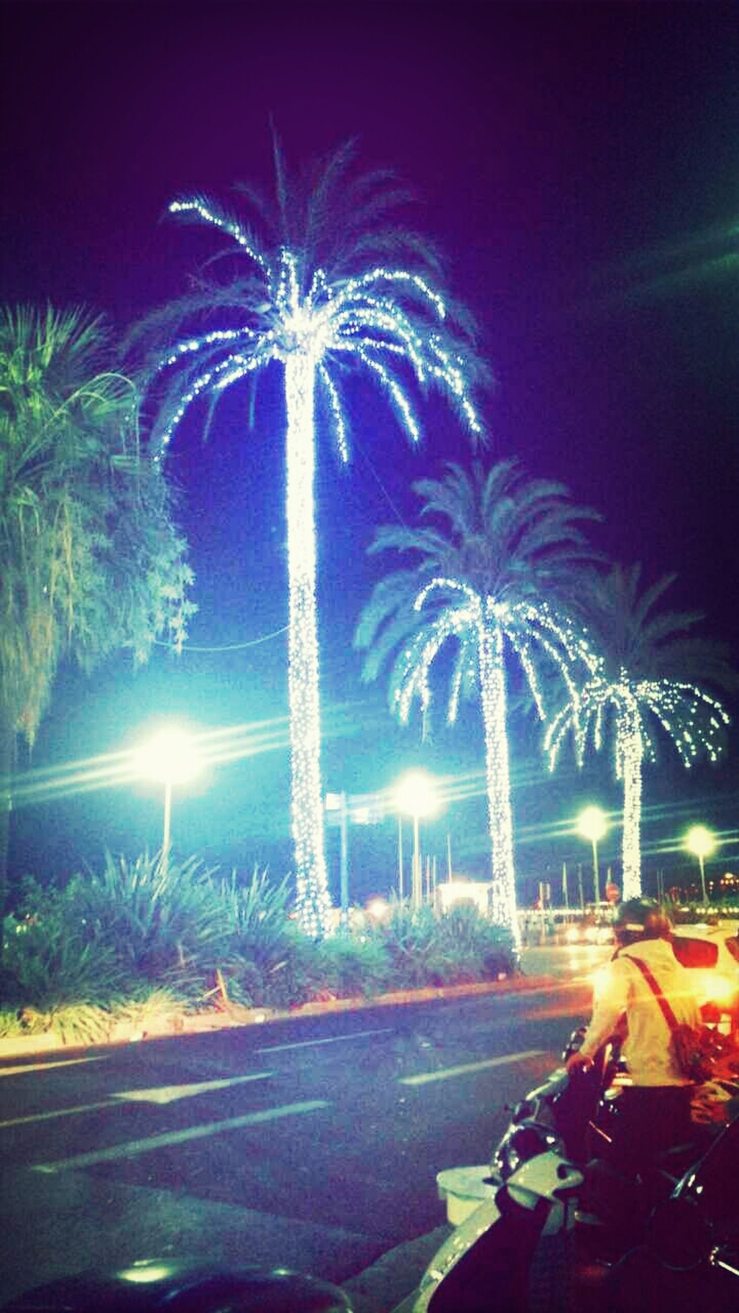 illuminated, night, transportation, car, land vehicle, long exposure, palm tree, street, motion, road, street light, mode of transport, light trail, blurred motion, tree, lighting equipment, speed, city, sky, glowing