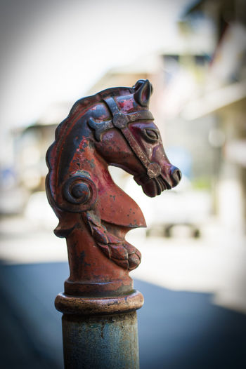 Horse tie-up in New Orleans Animal Representation Art Art And Craft Big Easy Carving - Craft Product Close-up Color Explore Focus On Foreground Horse Horse Head Horse Tie-up Life Louisiana Metal New Orleans Old-fashioned Ornate Sculpture South Statue Still Life Swamp Travel Vibrant