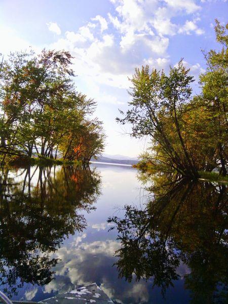 SacoRiver Nature Maine