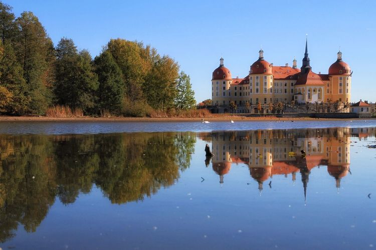 Schloss Moritzburg EyeEm Outdoors EyeEm Best Shots EyeEmBestPics EyeEmNewHere Germany EyeEm Nature Lover Built Structure Reflection Water Architecture Built Structure Tree Building Exterior Sky Building Waterfront Nature Lake Clear Sky Travel Destinations Religion Place Of Worship No People Travel Outdoors