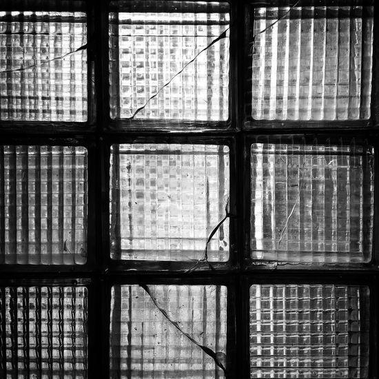 Precision HiFiPhotographia HifiFernandaCoronado Bw Pretoebranco Pb Blackandwhite Blackandwhitephotography Blancoynegro Blackandwhite Photography