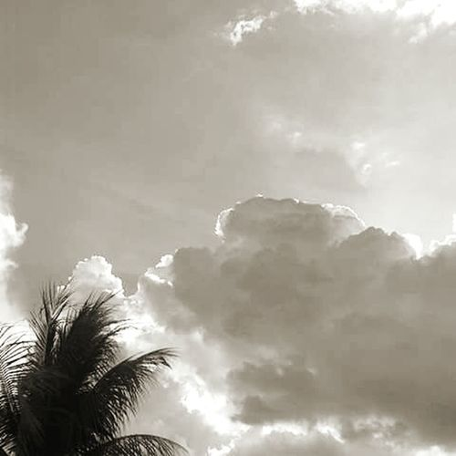 Blackandwhite Perfect Match How Picturing Individuality Showcase: November Relaxing Taking Photos Check This Out Enjoying Life Hello World VenezuelanPhotographer Amateurphotography Photography Citysunset Sunset Popular Photo Clouds And Sky Venezuela Sky And Clouds