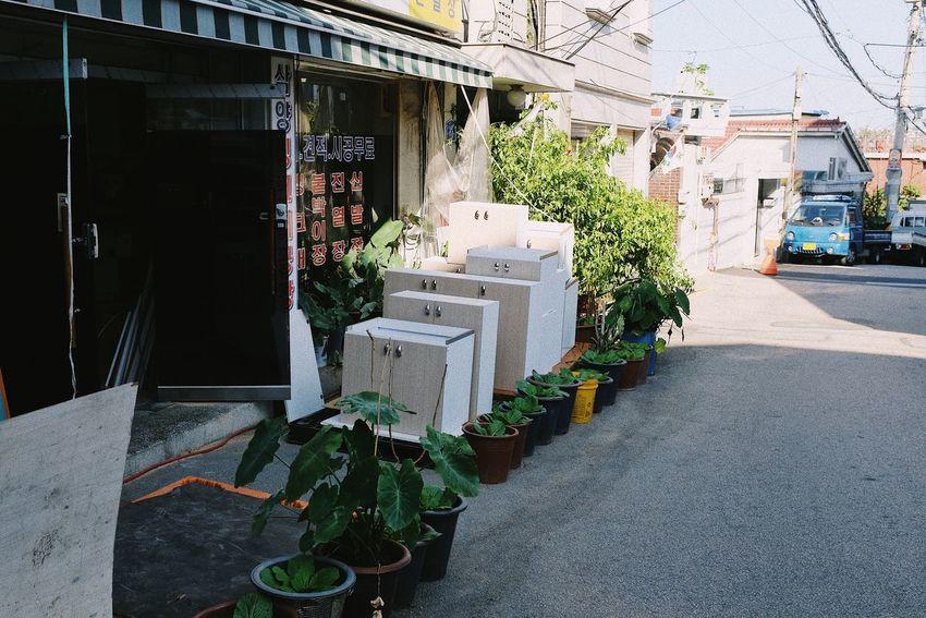 Building Exterior Architecture Built Structure Building Day Plant Nature