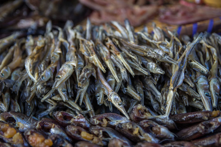 Close-up of dried fish for sale at market stall