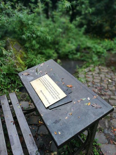 Neruda Poeta Fotography Paisajes Naturales. Nature Chile