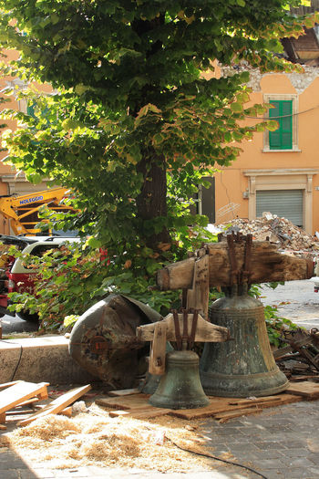 Bells on the ground after the earthquake in Aquila Tree Bells Built Structure Day Earthquake Earthquake Area Earthquake In Italy Earthquake L'aquila Ground No People Outdoors Tree