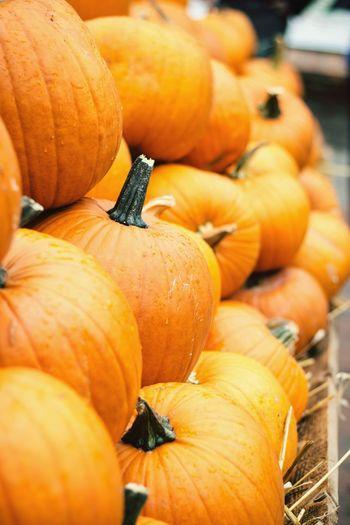 Orange Color Large Group Of Objects Market For Sale Pumpkins Herbst Kürbisse Kürbis Orange Gestapelt Herbstmarkt