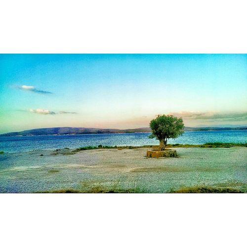 Turkey Izmir
