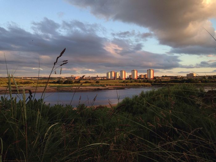 City City Life Close To Nature View Of The City From Nature Evening Lights High Rises Background Near Water Riverside Seaside Town Sun Shining On The City