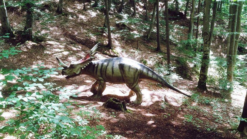 Dinosaur DinoPark