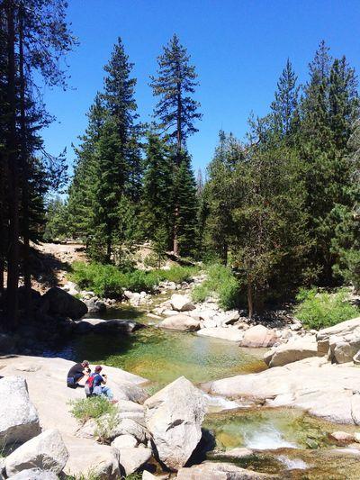 River River View Kaweah River Sequoia Sequoia National Park Tokopah Falls