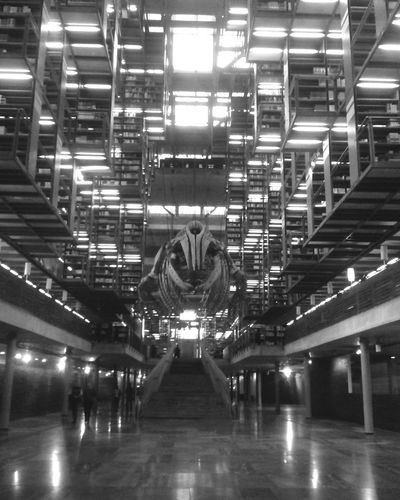 Love Of Books! Bibliotheque Mexico City Blackandwhite