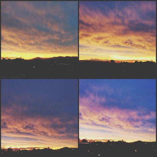 ???❤️❤️?? Sunset Popular Photos First Eyeem Photo Hugging A Tree