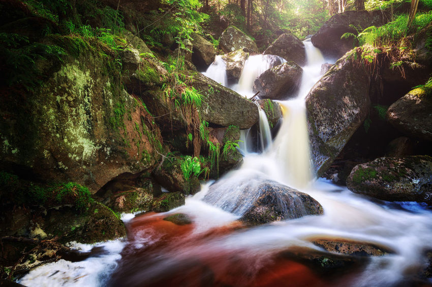 Beauty In Nature Blurred Motion Environment Falling Water Flowing Flowing Water Forest Harzmountains Land Long Exposure Motion Nature No People Outdoors Plant Power In Nature Rainforest Rock Rock - Object Scenics - Nature Solid Stream - Flowing Water Tree Water Waterfall