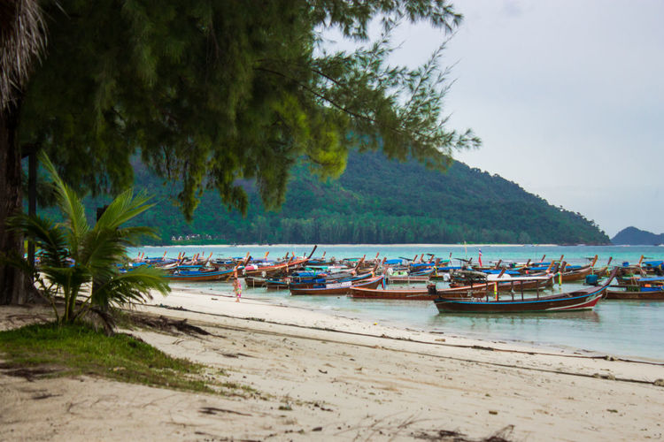 Sky & Sea Beach Beauty In Nature Day Land Mode Of Transportation Moored Nature Nautical Vessel No People Outdoors Plant Rowboat Sand Scenics - Nature Sea Sky Tranquil Scene Tranquility Transportation Tree Water