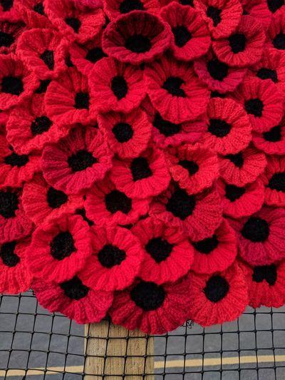 Full frame shot of red petals on floor