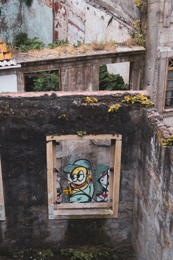 The Week on EyeEm Abandoned Architecture Building Building Exterior Built Structure Creativity Damaged Day Graffiti Human Representation No People Old Outdoors Plant Religion Representation Ruined Spirituality Wall - Building Feature Weathered Window