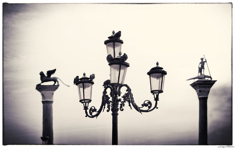 Venedig Venezia Architecture Electric Lamp No People Street Street Light Tauben Venice Vignette