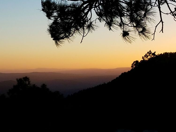 Soothing and serene waves of distant mountains. Didnt want to spoil the subtle hues with any filters. Cameraphonephoto Tree Sunset Silhouette Scenics Nature Landscape Sky Beauty In Nature Outdoors Tranquility Sunlight Pinaceae Mountain Travel Destinations Multi Colored Beauty Mogollon Rim Nightfall