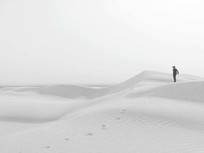 Sand Dune Full Length Desert Sand Adventure Beach Summer Silhouette Sky Landscape