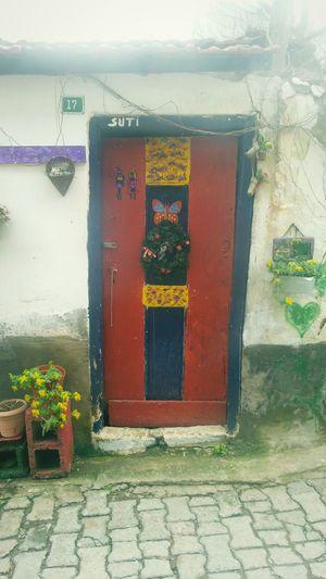 Bursa Tirilye Trilye Zeytinbağı Door Olddoor Kırmızı Red Colorfullife