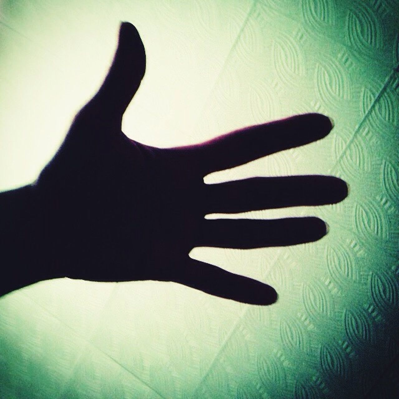 human hand, human body part, human finger, one person, gesturing, silhouette, shadow, spooky, indoors, people, one man only, adults only, adult, palm, close-up, only men, day